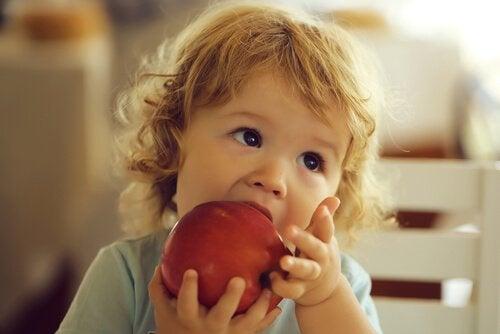 貧血予防のための食べ物とその栄養素