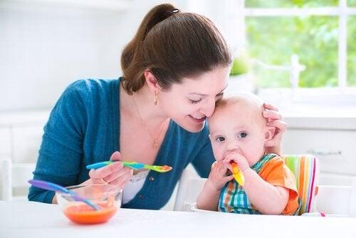 6-9ヶ月の赤ちゃん向けの風味豊かなレシピ