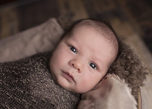 驚くべき赤ちゃんの脳