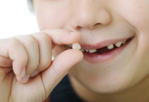 乳歯が抜ける順番と永久歯が生える時期