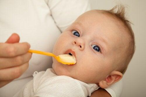 どうやって離乳食を始めればいいの?