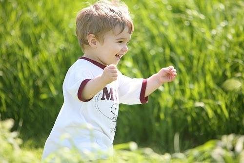 二歳児を理解するための4つのヒント