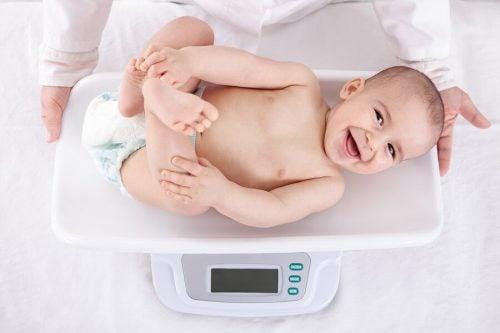 生後1年間の赤ちゃんの体重増加