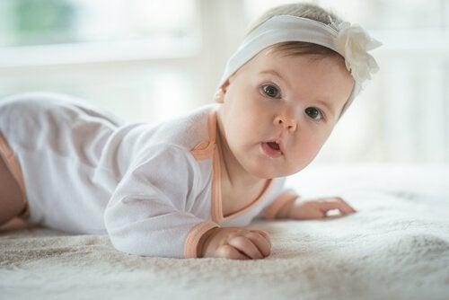 ハイハイする赤ちゃん