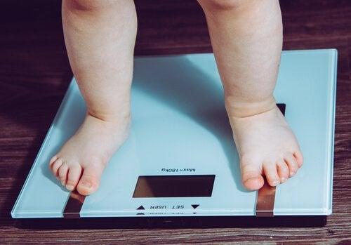 子どもの食生活-体重