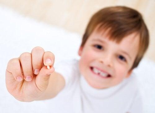 乳歯が抜ける タイミング