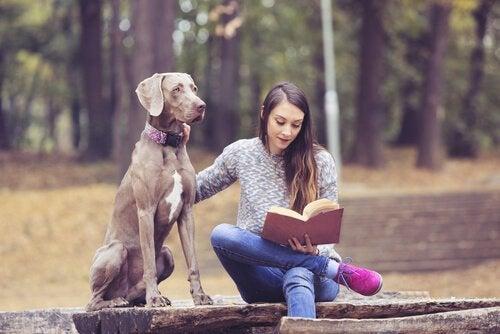犬 十代のための本