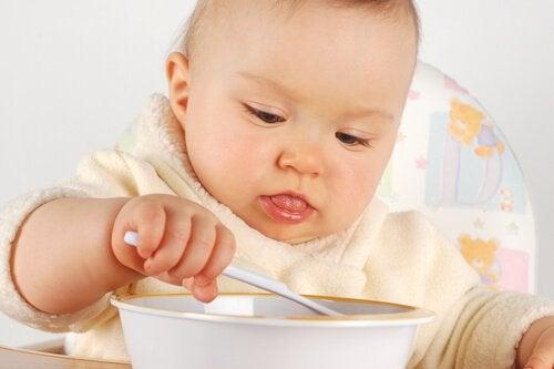 食べる赤ちゃん 必要な栄養