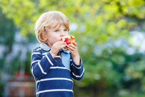ヘルシーな食生活 幼少期