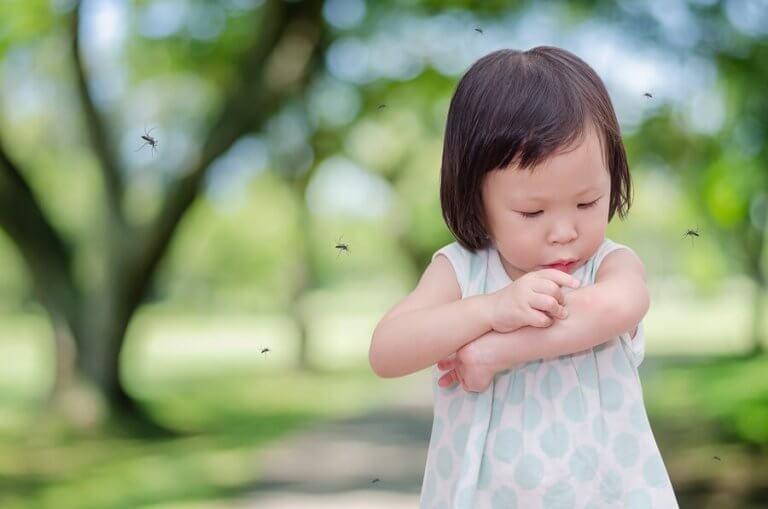 どうしてうちの子はよく蚊に刺されるの?原因と対処法をご紹介