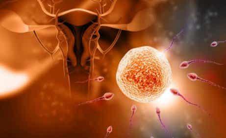 妊娠にまつわる5つの迷信について