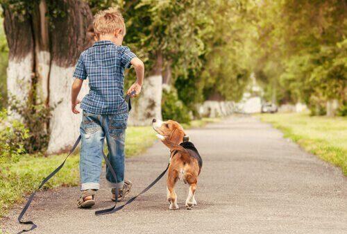 少年と犬 子ども    ペット   メリット
