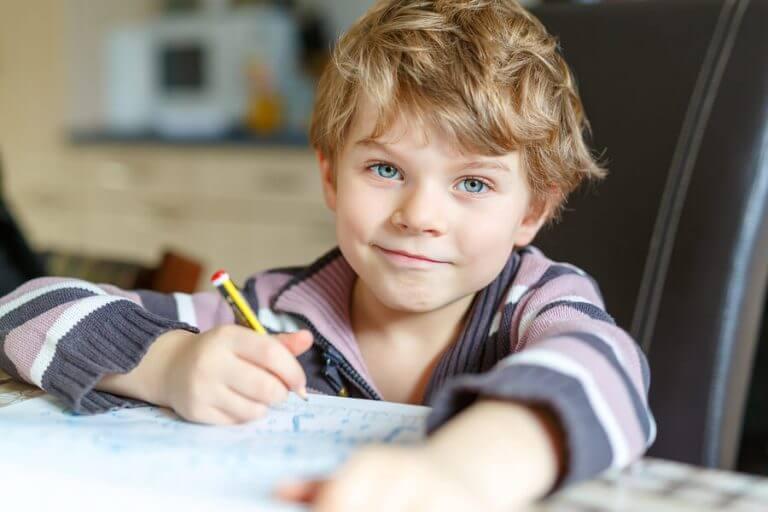 宿題をする男の子 子ども   1人  宿題