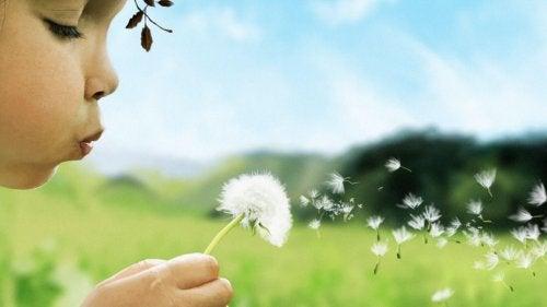花に息を吹きかける子ども 呼吸法 落ち着く 子ども