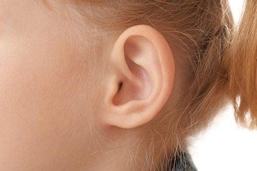 耳 耳の衛生 清潔に保つ