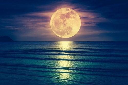 月の周期と出産はどのように関係している?科学的根拠は?