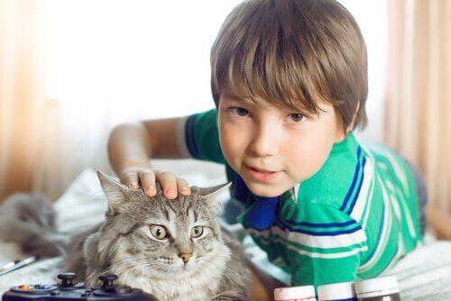 猫と子ども 子ども    ペット   メリット