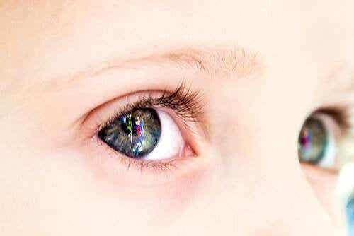 赤ちゃんはどのように色彩を見ているのか?:赤ちゃんの視力