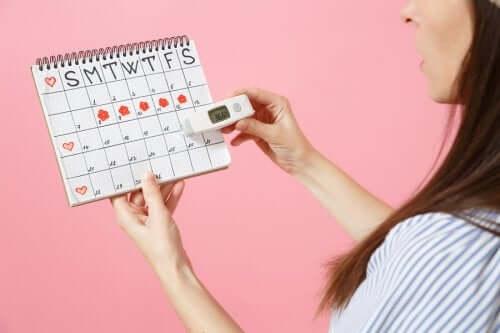 月経周期の確認 黄体期 妊娠