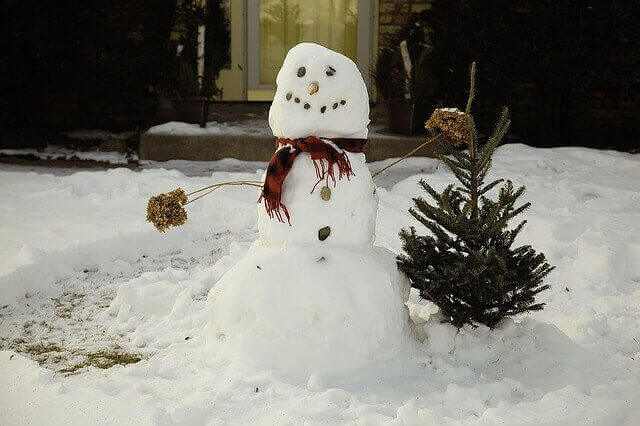 家族 雪遊び
