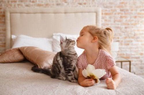 田舎に住む子どもにお勧めのペット5選:ペットの適切な選び方