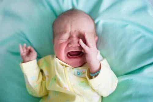 なんで赤ちゃんは突然起きて泣き出すのだろうか?