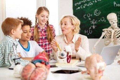学校での 神経教育学 について