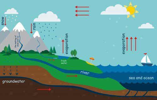 水の循環のしくみを子どもに上手く説明するためには?