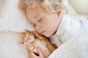 子どものお昼寝 赤ちゃんの睡眠パターン