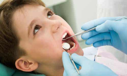 乳歯 子ども 歯 健康